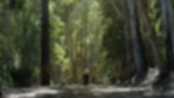 LAGO DOS NENOS Screen_1.jpg