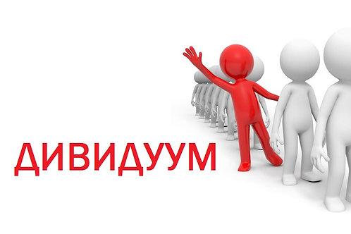 домен: дивидуум.рф