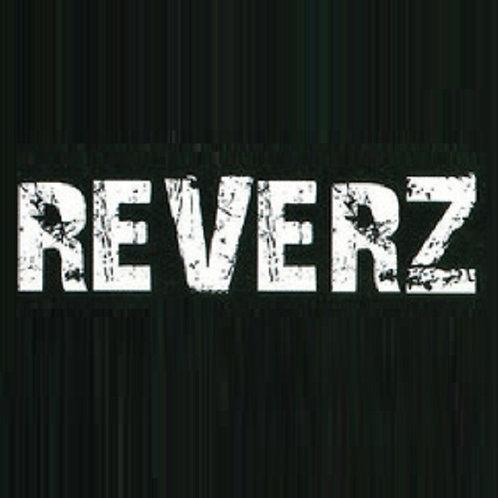 домен: www.REVERZ.ru