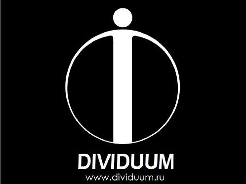 домен: www.DIVIDUUM.ru