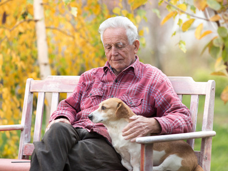 New standards good for older owners of pets