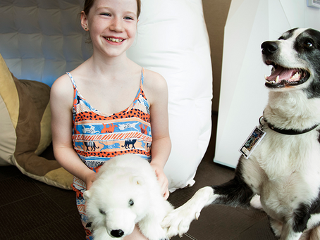 Celebrate the Year of the Dog - bring your canine friends to the Maritime Museum