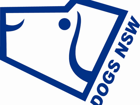 Dogs NSW supports government initiative, but not to harm responsible hobby breeding