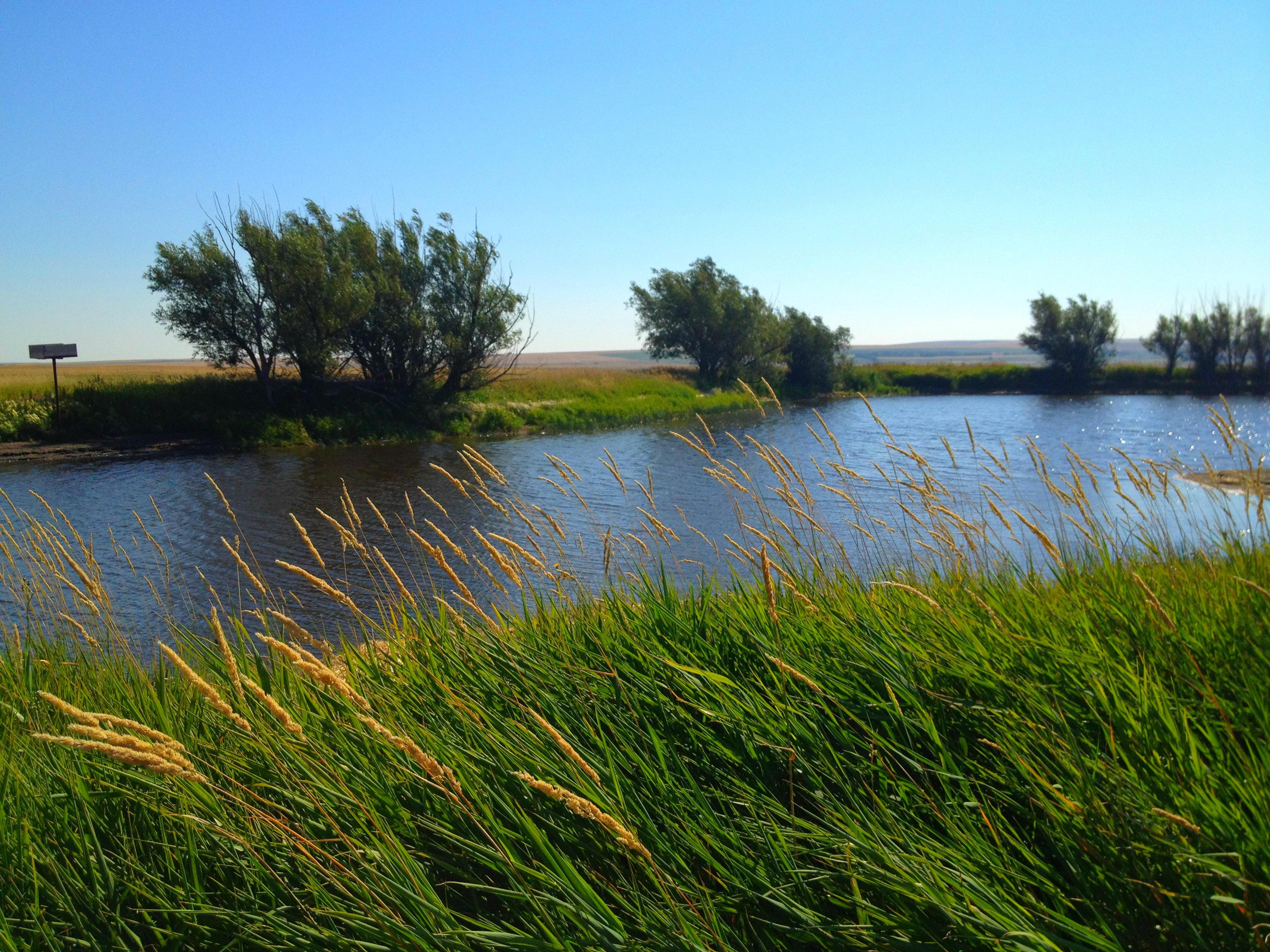 Piquito Pond