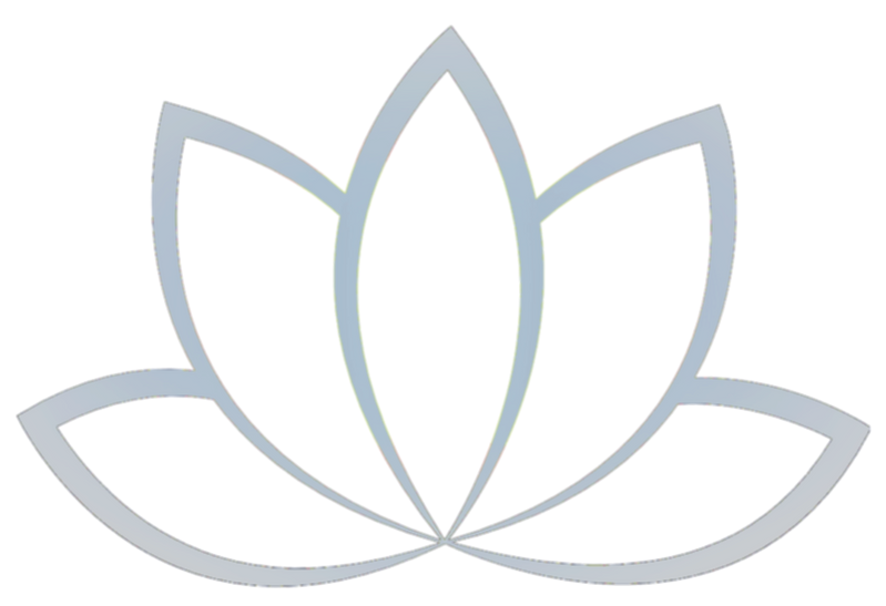 Lilly%2520Logo_edited_edited.png