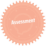 assess-orng-gear_edited.png