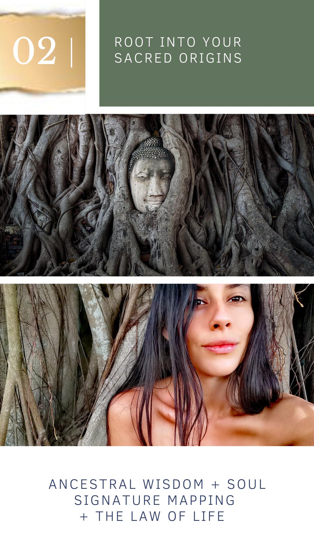 Roots go Deep
