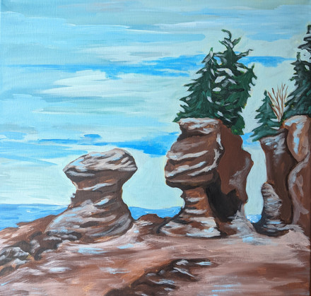 Winter at Hopewell Rocks