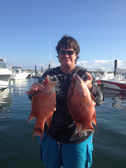 Hogfish hunt scuba charters