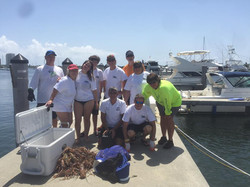 lobster diving west palm