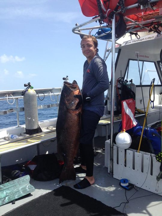 spear fishing charters