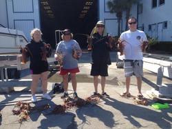 lobster hunting scuba