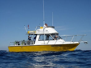 Dive Charters on Sandys Sunday