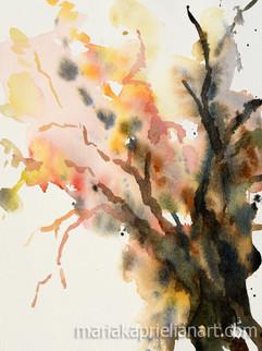 Humanitrees #2
