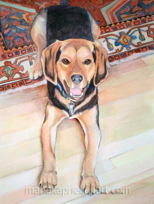 """Murray"" Watercolor 16x12"""