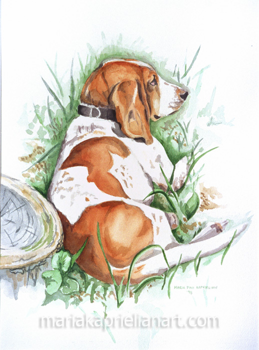 """""""Rhuby"""" Watercolor 16x12"""""""