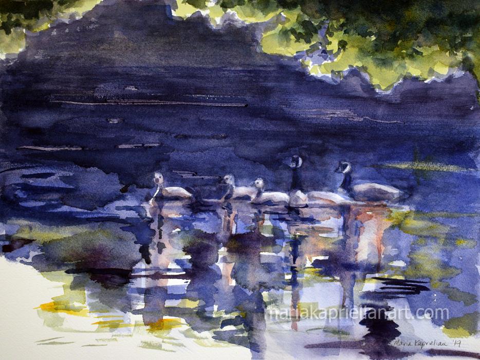 Geese At Ray Lake
