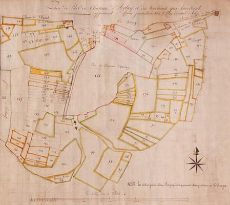 Ancien plan des parcelles de vignes du Château d'Arlay, XVIIème siècle