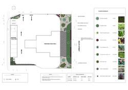Landscape Design - Carwash