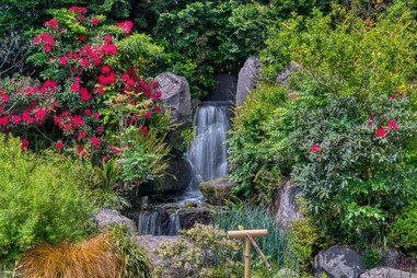 Serene Water Feature