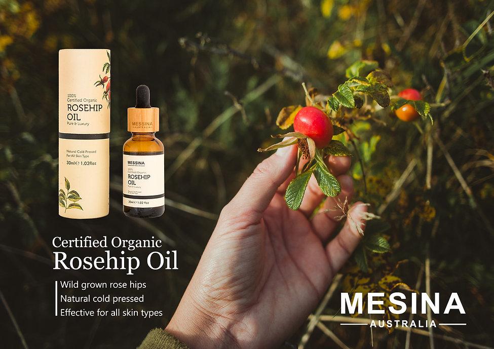 Rosehip oil image.jpg