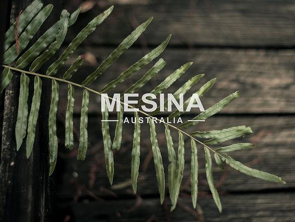 MESINA logo.jpg
