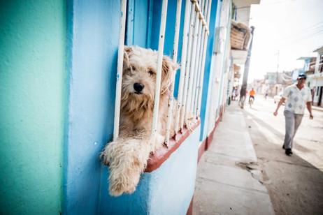 Cuba_Elan Mizrahi Photography-32.jpg
