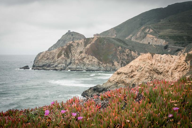 Cali For Site.jpg