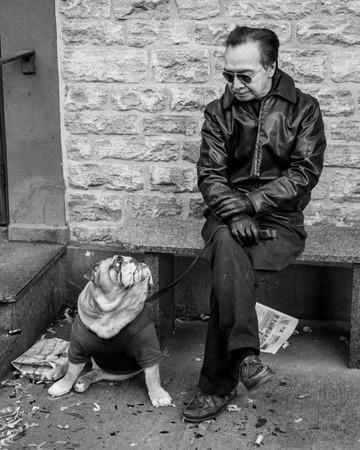 human dog portrait