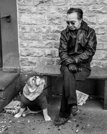 dog and human portrait