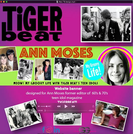 Tigerbeat  web banner insta.png