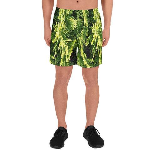 Green Long Shorts