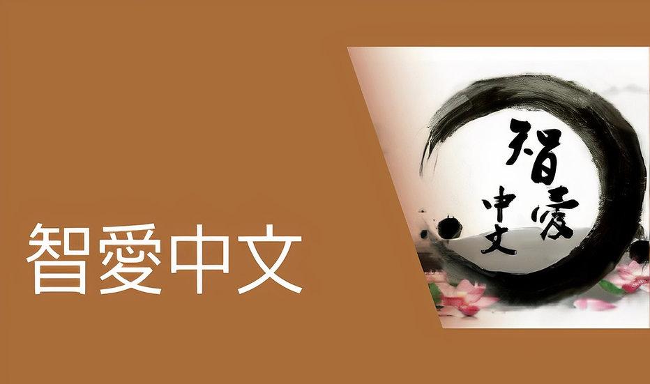 智愛中文平台—從閱讀出發,打好中文根基,鍛煉「聽、講、讀、寫」能力