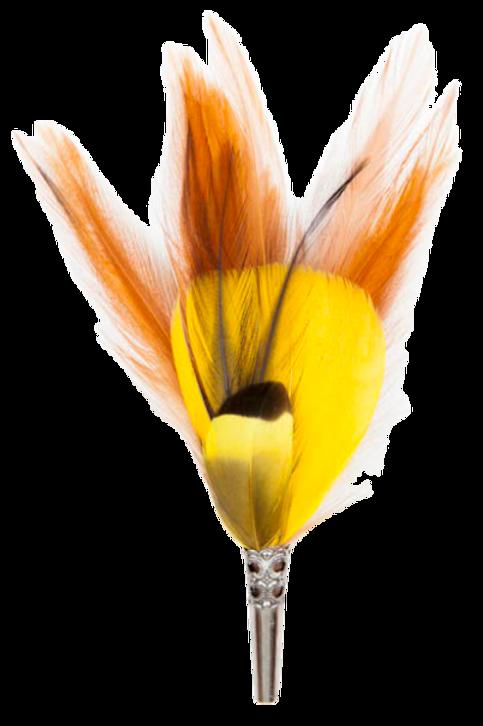 LOOSE Brooch Feathers Orange & Blue