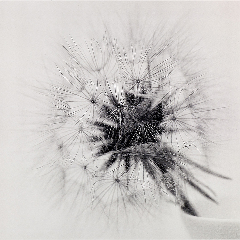 Intermediate Photopolymer Gravure