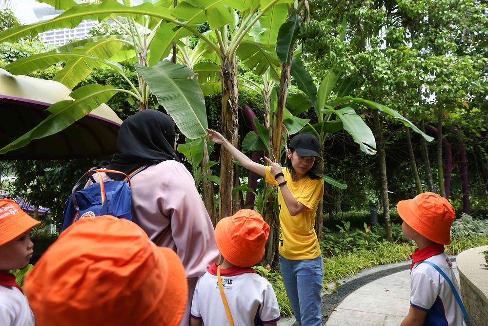 Eco Kampung Carnival Learning Trail 2