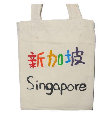 Painted Cloth Bag (Singapore)
