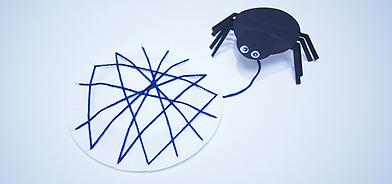 Homemade Spider Web