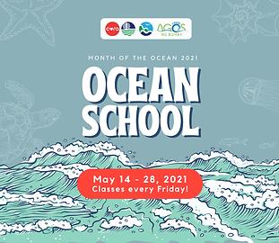 ocean-school-banner.png