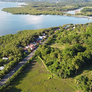cora-womangroves-baybay-leyte-08.jpg