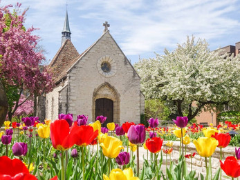 Student prepares to photograph Joan of Arc chapel as springtime approaches