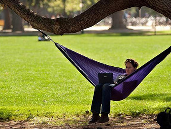 "Plans to ""relax"" in hammock thwarted by the fact that it always takes, like, 30 minutes to set it up"
