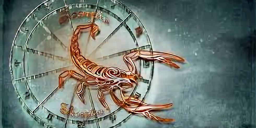 Scorpion Dinner 58-68y