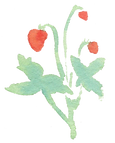 Plant_36.png