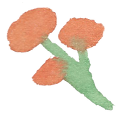 Plant_13.png