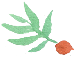 Plant_03_edited.png