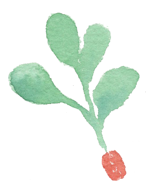 Plant_38.png