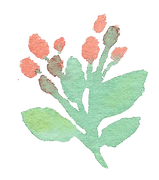 Plant_33.png