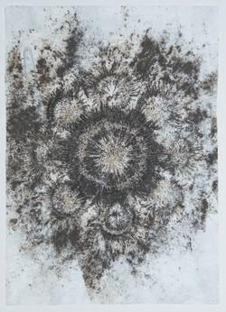 Iron filings flower