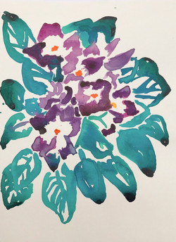 ink drawing of african violets